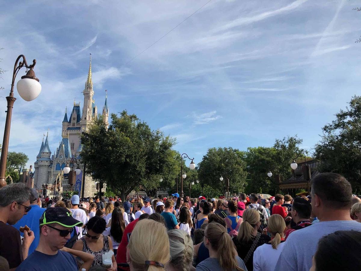 Rope Drop Crowds